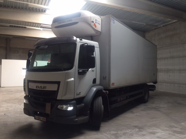 DAF LF 310 FOR EXPORT / THERMO KING / EURO 6 / Dhollandia ! VERKOCHT !